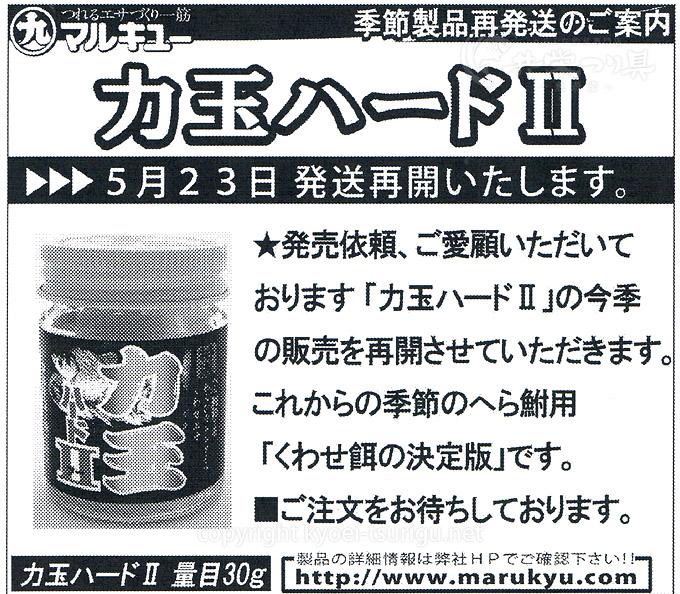 力玉ハード2発売日2017